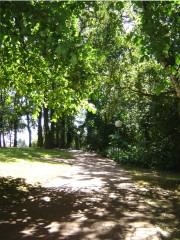 liegeplatz steinhuder meer